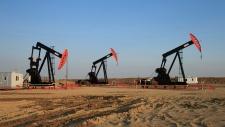 Pumpjacks on the Alberta Bakken oil field