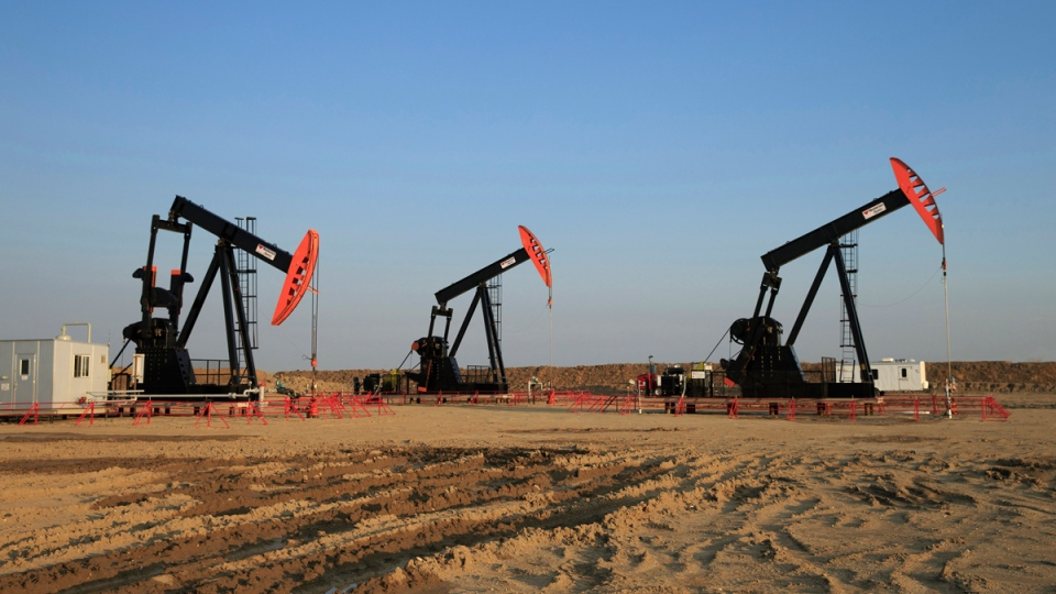 Three pumpjacks are shown on the Alberta Bakken oil field near Warner, Alta., on Aug. 3, 2014. (Larry MacDougal / THE CANADIAN PRESS)