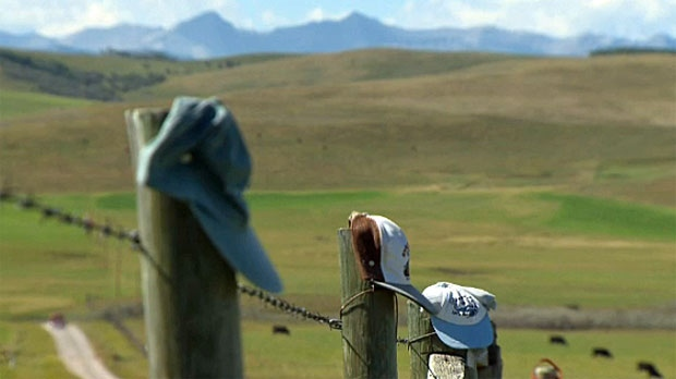 Longview, farmer's fence, baseball caps, fence top