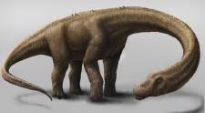 Artist rendering of Dreadnoughtus dinosaur