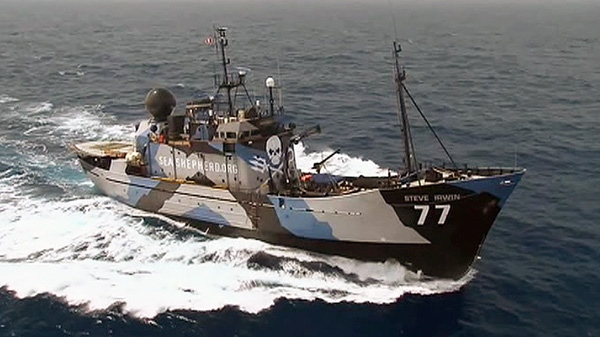 Sea Shepherd's aggressive tactics have included ramming ships, throwing stink bombs on board and preventing the sailors from loading their kill.
