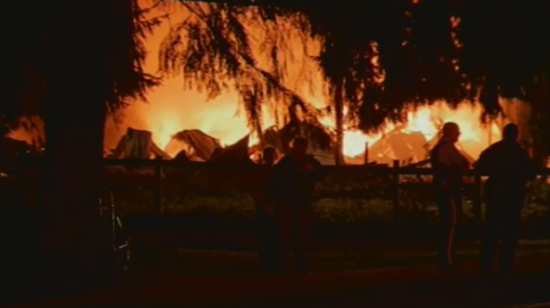 A massive three-alarm fire completely destroyed a Langley chicken barn on Sept. 5, 2014. (CTV)