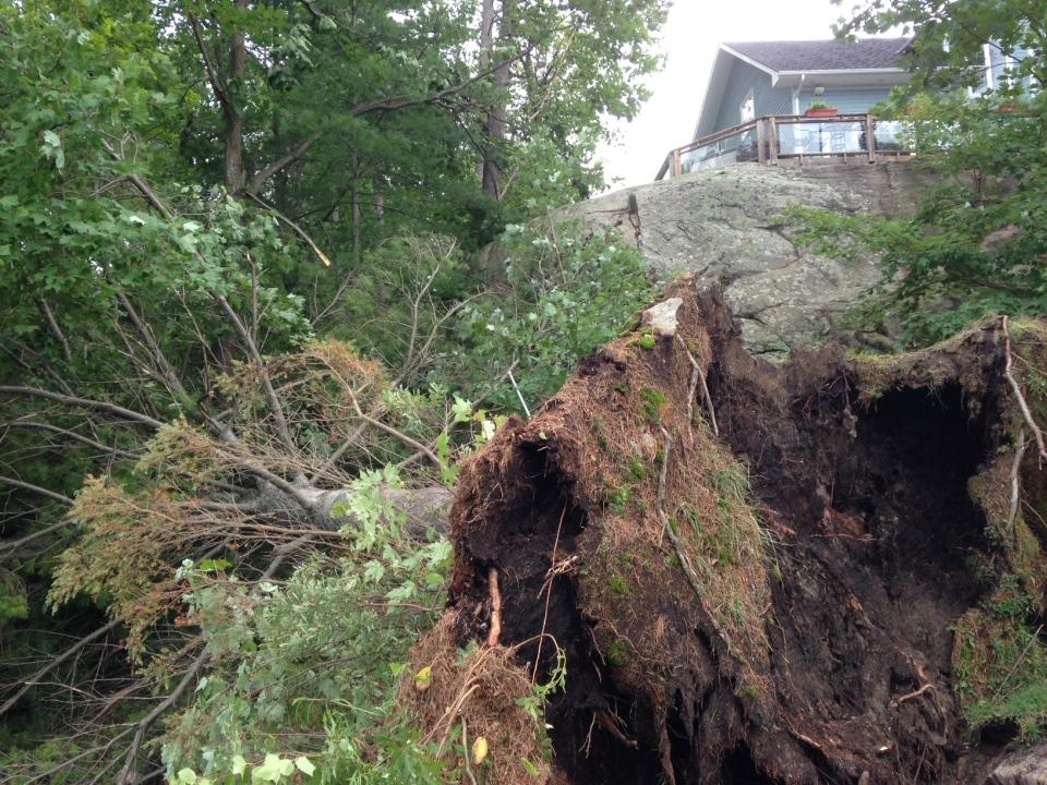 six mile damage