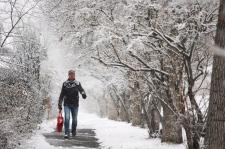 Calgary snowfall - Nov. 2013