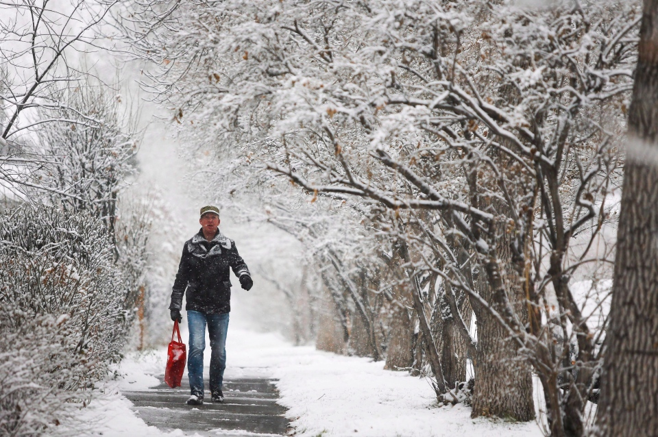 A pedestrian walks along a snowy street in Calgary in this Nov. 2, 2013 file photo. (Jeff McIntosh / THE CANADIAN PRESS)