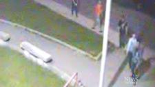 Malvern Collegiate statue vandalized