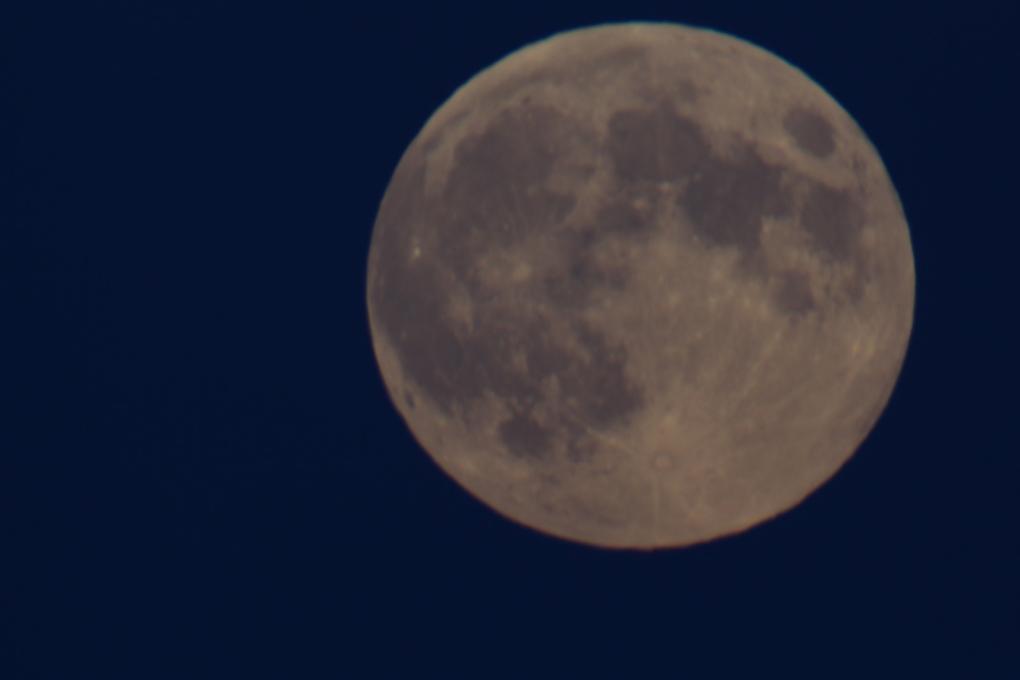 red moon 2019 winnipeg - photo #40