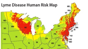 This map released by the Yale School of Public Health on Friday, Feb. 3, 2012 shows a map which indicates areas of the eastern United States where people have the highest risk of contracting Lyme disease based on data from 2004-2007. (AP Graphic/Yale School of Public Health, Maria Diuk-Wasser)