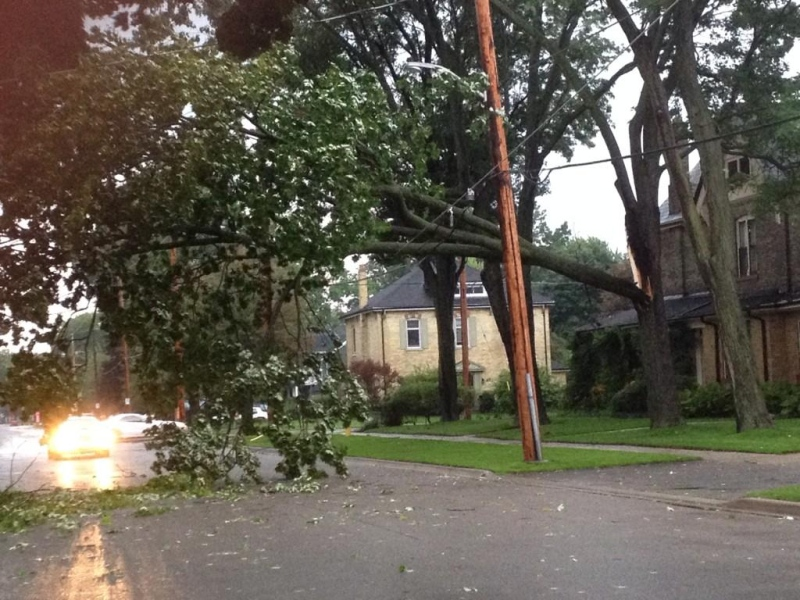 Part of a tree sits atop hydro wires on Maitland Street in London, Ont. on Wednesday, Sept. 10, 2014. (Jim Knight / CTV London)