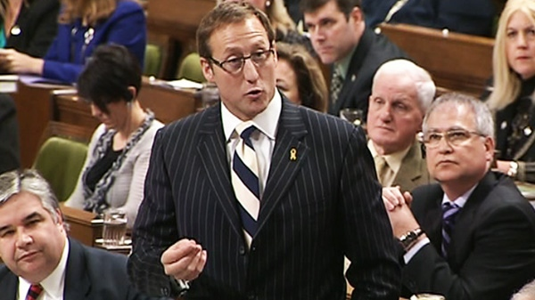 Minister of National Defence Peter MacKay speaks during question period in the House of Commons on Parliament Hill in Ottawa, Wednesday, Feb.8, 2012.