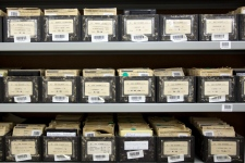 Holocaust experts preserving WWII era items