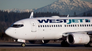 A pilot taxis a Westjet Boeing 737-700 plane to a gate after arriving at Vancouver International Airport in on Feb. 3, 2014. (The Canadian Press/Darryl Dyck)