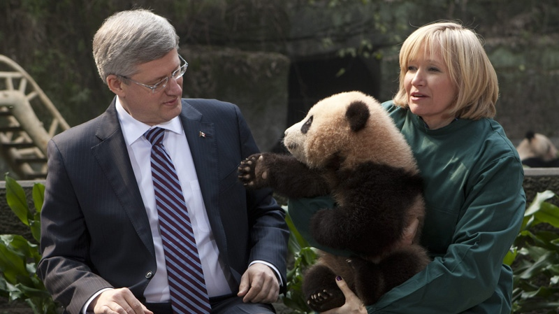 Canadian Prime Minister Stephen Harper and his wife Laureen hold a panda bear at the Chongqing Zoo in Chongqing, China Saturday February 11, 2012. (THE CANADIAN PRESS/Adrian Wyld)