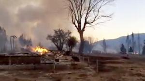Boles wildfire razes small California lumber town