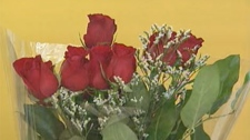 One Winnipeg florist said the cost for a dozen roses goes up about 70 per cent around Feb. 14.