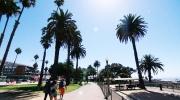 CTV National News: Santa Monica stress