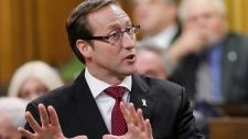 Defence Minister Peter MacKay stands in the House of Commons during Question Period on Parliament Hill, in Ottawa Tuesday Feb. 14, 2012 (Fred Chartrand / THE CANADIAN PRESS)