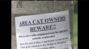 Missing cats turning up dismembered