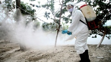 A health worker wearing a protective gear sprays disinfectant at a site of a suspected outbreak of the H5N1 bird flu virus among ducks in Nhat Tan commune, Kim Bang district, Ha Nam province, Vietnam, Tuesday, Feb. 14, 2012. (AP / Na Son Nguyen)