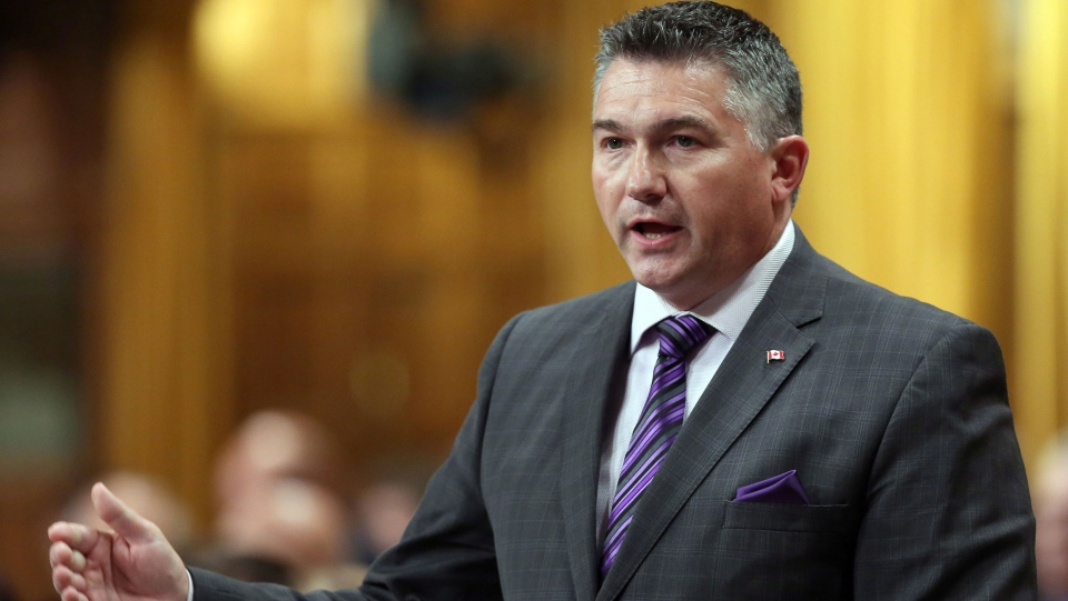 Conservative MP James Bezan stands in the House of Commons during Question Period on Parliament Hill, in Ottawa, Wednesday, Sept. 24, 2014. (Fred Chartrand / THE CANADIAN PRESS)