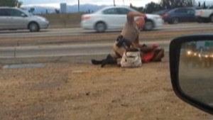 A California Highway Patrol officer straddles a woman while punching her on the shoulder of a Los Angeles freeway, July 1, 2014. (AP / David Diaz, File)