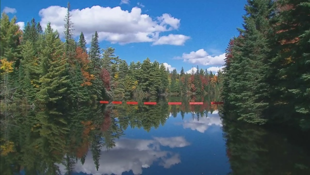 CTV Toronto photojournalist Sean MacInnes headed north of the city to Huntsville, Ont. to capture the early signs of fall.<br><br>Clouds are reflected in a lake in Huntsville, Ont. on Thursday, Sept. 25, 2014. (Sean MacInnes / CTV Toronto)
