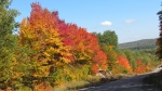 Fall in Elliot Lake, Ont.