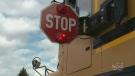 CTV Ottawa: School bus cameras