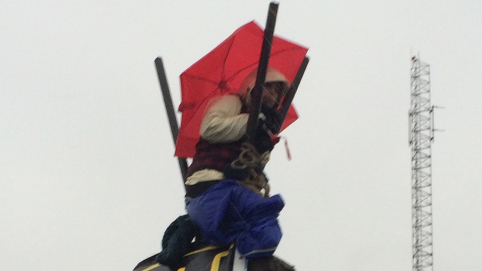 One protester is perched atop poles