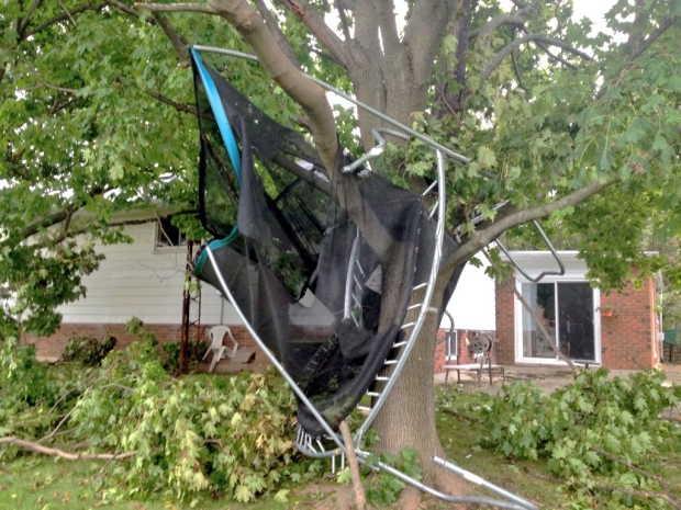 A trampoline remains embedded in a tree in Sheffield, Ont., on Tuesday, Oct. 7, 2014 -- one day after a tornado may have touched down in the area. (Marc Venema / CTV Kitchener)