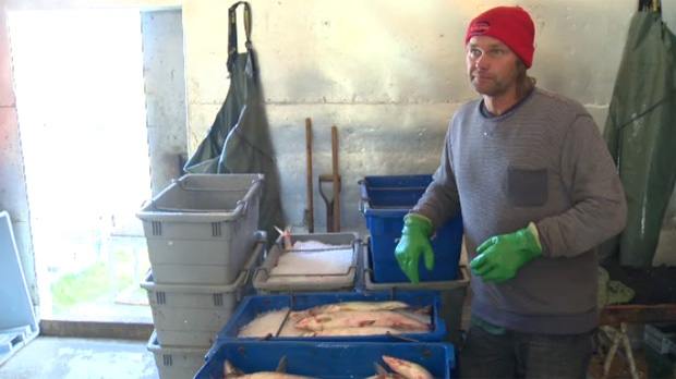 Pickerel sells for nearly twice as much as whitefish. Rather than allowing the less expensive species to count against their quotas, Bruce Benson says fishermen have been known to simply discard or waste the whitefish.
