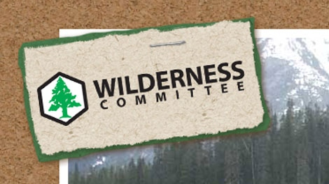 The Wilderness Committee says a defamation suit launched against it by Taseko Mines Ltd. is a SLAP (strategic lawsuit against public participation) action. (Wilderness Committee)