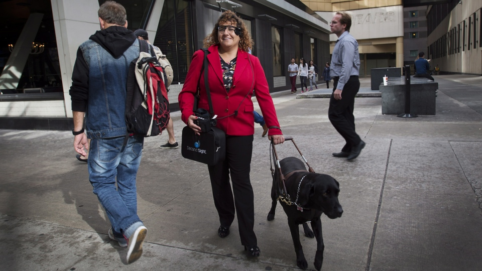 Orly Shamir, a credit analyst, wears the Argus Retinal Prosthesis System (Argus II) while walking with her guide dog Francie in Toronto on Tuesday, Oct. 14, 2014. (Darren Calabrese / THE CANADIAN PRESS)