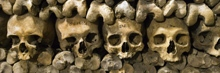 Skulls and bones in Paris' Catacombs