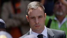 Pistorius has no money left: lawyer