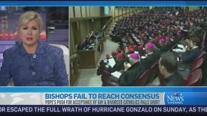 CTV News Channel: A divide between bishops