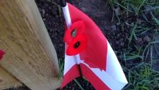 Flag at Hamilton memorial