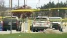 CTV Toronto: Man killed at Canada's Wonderland