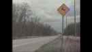 A sign warning drivers to watch for deer crossing ahead is seen in Bruce County, Ont. on Wednesday, Oct. 29, 2014. (Scott Miller / CTV London)