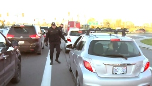 CTV Ottawa: Drivers ticketed in bus lane