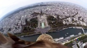 Eagle carrying camera soars over Paris