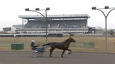 Gambling changes could kill the sport of harness racing.
