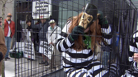 Animal rights activist groups staged a demonstration against the transportation of monkeys to laboratories on Sunday. Mar. 18, 2012. (CTV)