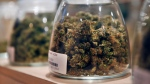 Marijuana is displayed at the River Rock dispensary in Denver, Colorado, Oct. 23, 2013 file photo. (AP / Brennan Linsley, File)