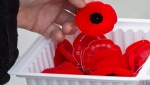 A woman purchases a poppy in Ottawa on Friday, Nov. 7, 2014. (The Canadian Press / Justin Tang)