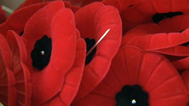 Orangeville man accused of poppy donation box theft - CTV News