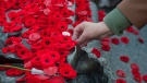 People place poppies at the Tomb of the Unknown Soldier following the Remembrance Day ceremony at the National War Memorial in Ottawa on Tuesday, Nov. 11, 2014. (The Canadian Press/Justin Tang)