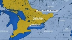 Two people are dead following the crash of a small plane in the Algonquin Provincial Park in central Ontario.
