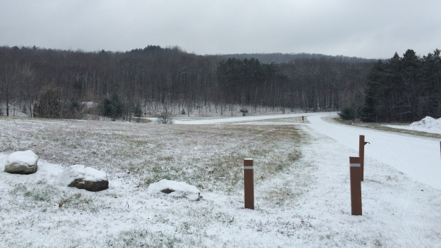 Snow in Gatineau Park