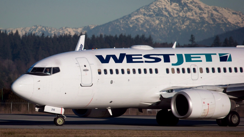 A WestJet plane at Vancouver International Airport in on Feb. 3, 2014.(The Canadian Press/Darryl Dyck)